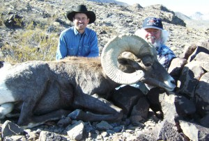 2000s10a 300x203 Nevada Desert Bighorn Sheep, Leeder Hunting