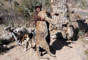 2000s5a 300x203 Nevada Mt.Lion, Leeder Hunting